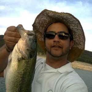 Lake Travis Bassin (Early 2012)